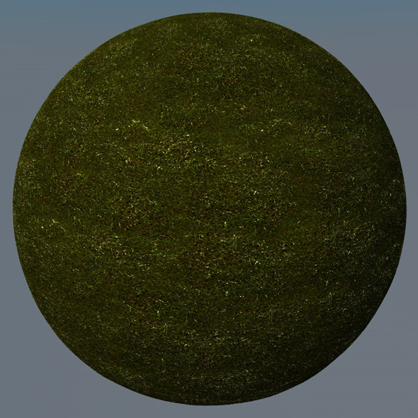 3DOcean Grass Landscape Shader 022 8781819