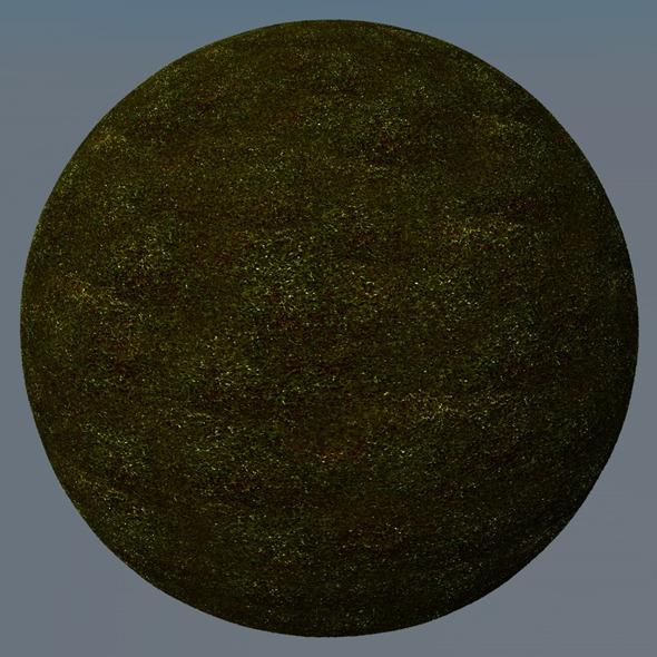 3DOcean Grass Landscape Shader 023 8781962