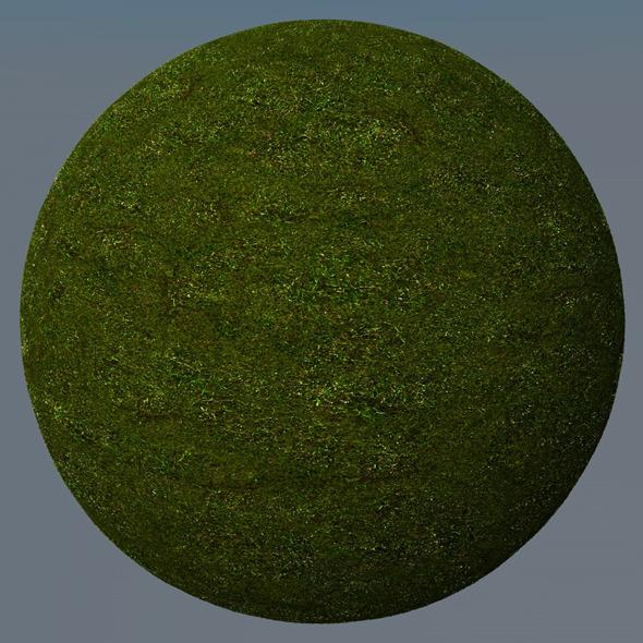 3DOcean Grass Landscape Shader 025 8782225
