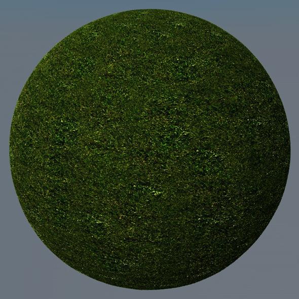 3DOcean Grass Landscape Shader 026 8782274