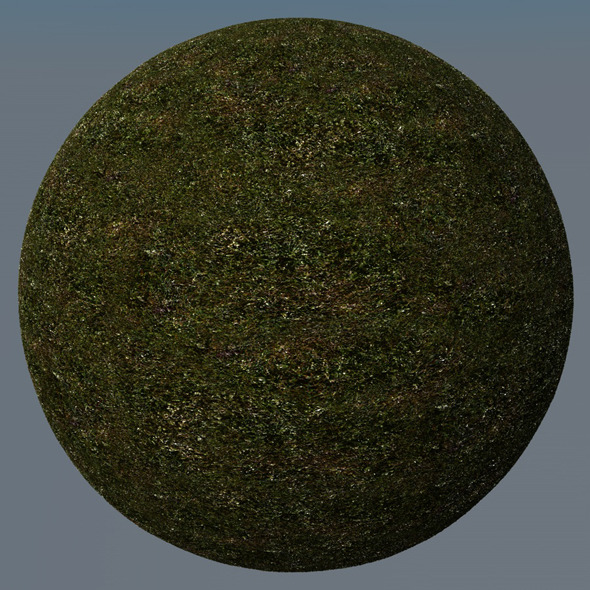 3DOcean Grass Landscape Shader 027 8782571