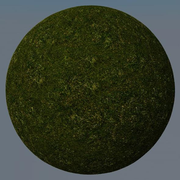3DOcean Grass Landscape Shader 028 8782777