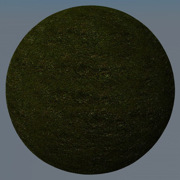 3DOcean Grass Landscape Shader 029 8782807
