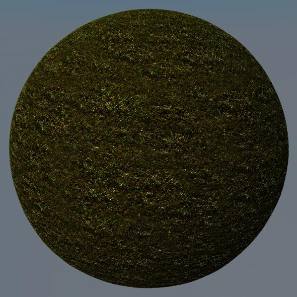 3DOcean Grass Landscape Shader 030 8782838