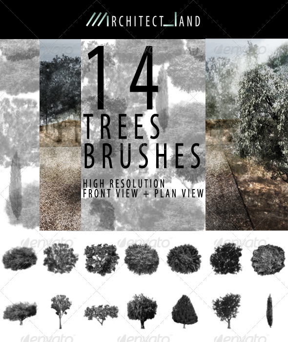 GraphicRiver 14 Trees Brush Set 8783457