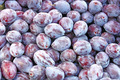 Fresh Natural Ripe Plums on the Market - PhotoDune Item for Sale