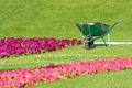 An Empty Agricultural Wheelbarrow in Park - PhotoDune Item for Sale