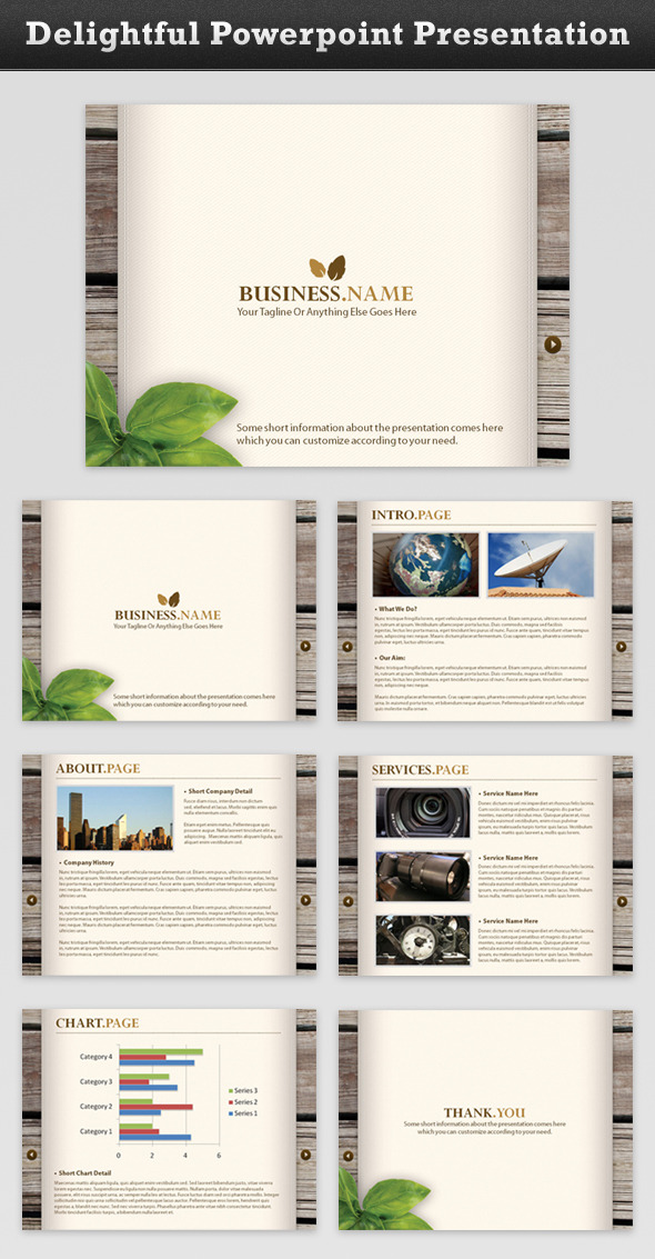 Delightful Business Presentation - Business PowerPoint Templates