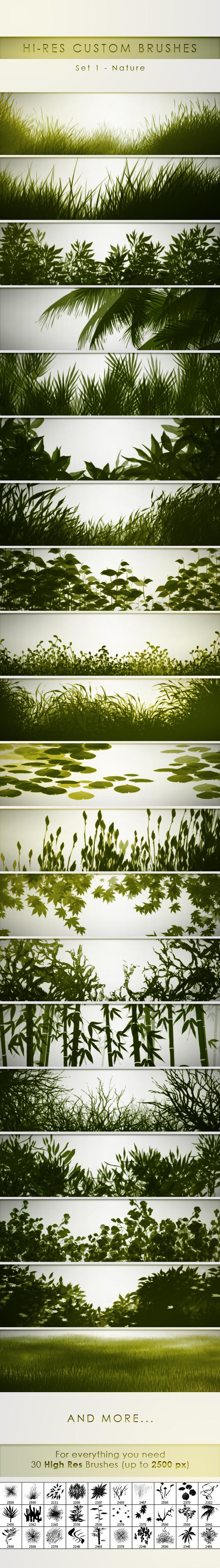 30 Hi-Res Custom Brushes Nature