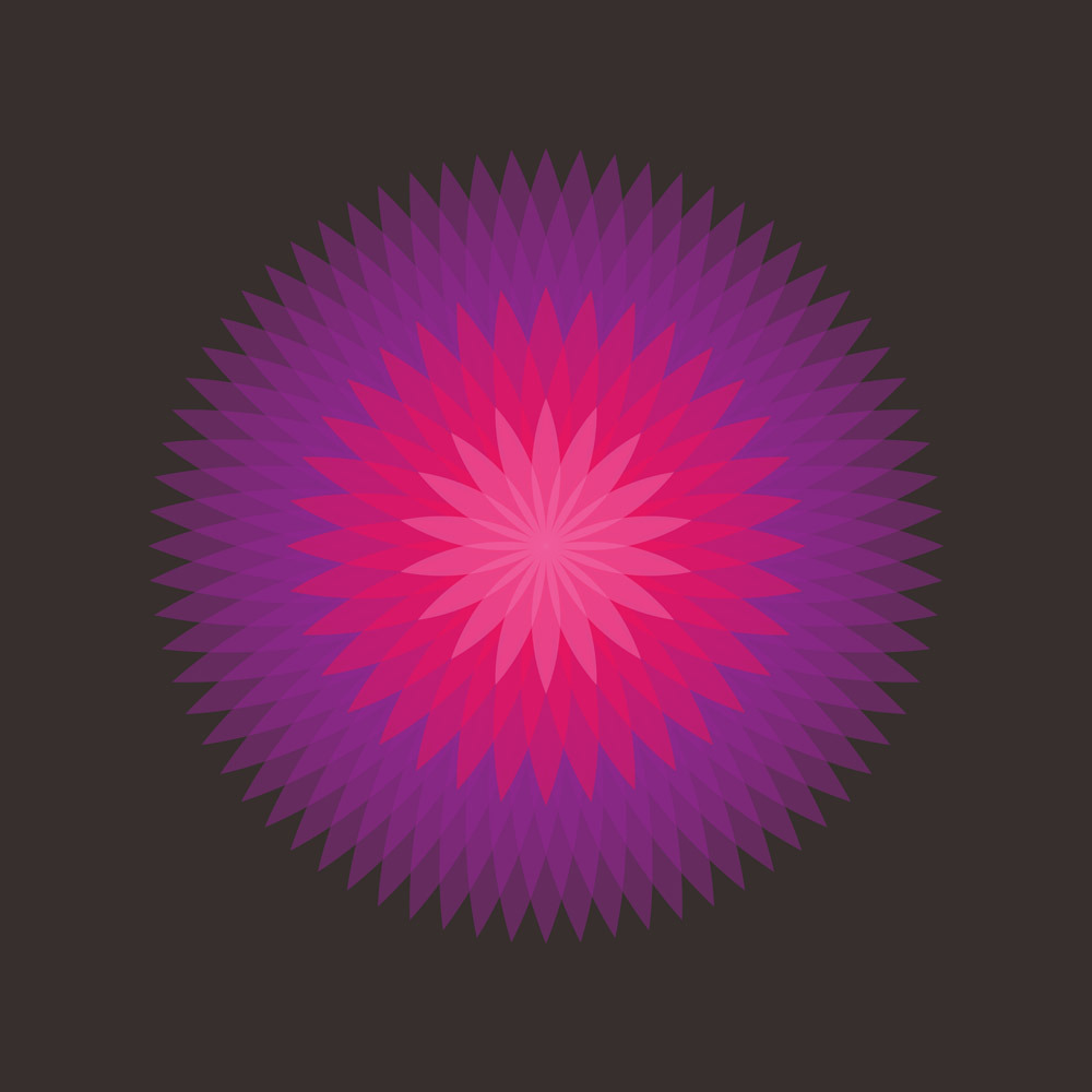 Circular Rotation Action