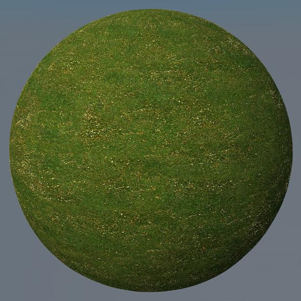 3DOcean Grass Landscape Shader 031 8791025