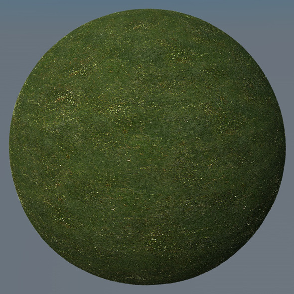3DOcean Grass Landscape Shader 033 8791200