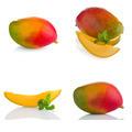 Set of mango fruit - PhotoDune Item for Sale