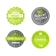 Organic Natural and Eco Food Icons Set - GraphicRiver Item for Sale