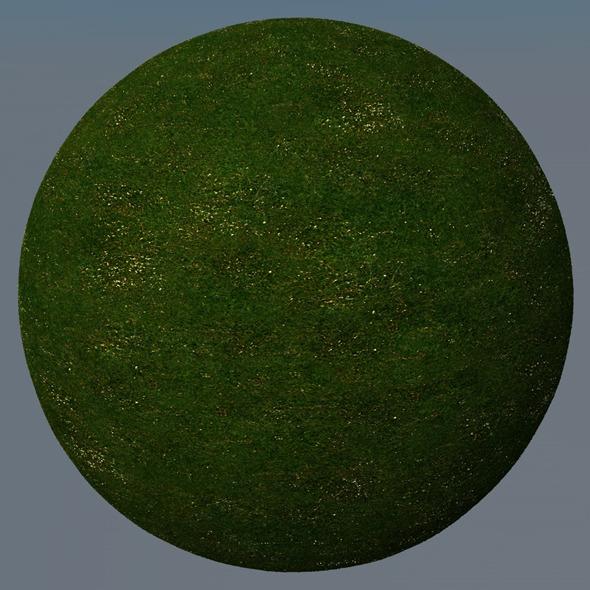 3DOcean Grass Landscape Shader 034 8791273