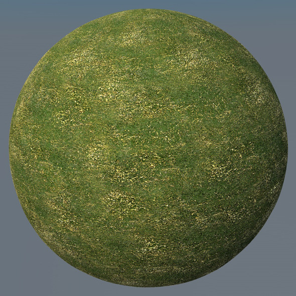 3DOcean Grass Landscape Shader 036 8791772