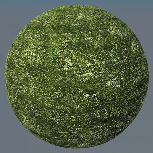3DOcean Grass Landscape Shader 037 8791952