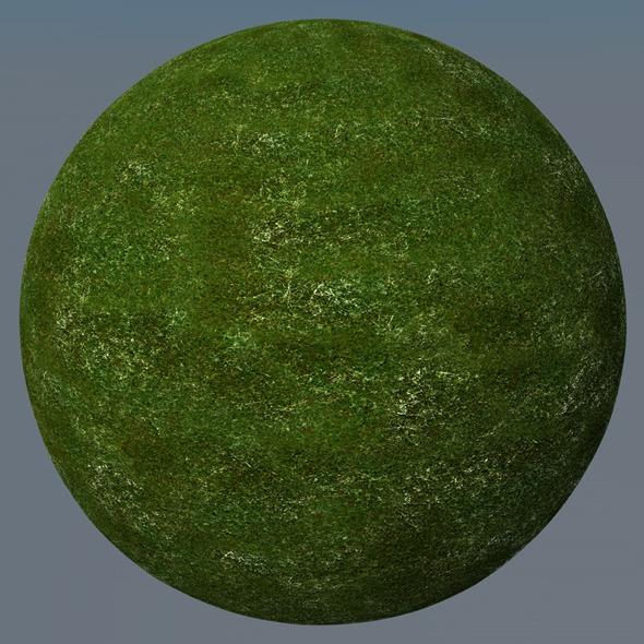 3DOcean Grass Landscape Shader 038 8792023