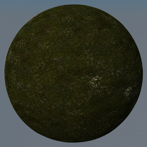 3DOcean Grass Landscape Shader 039 8792237