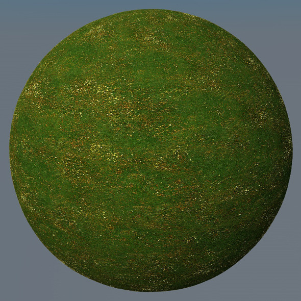 3DOcean Grass Landscape Shader 043 8792921