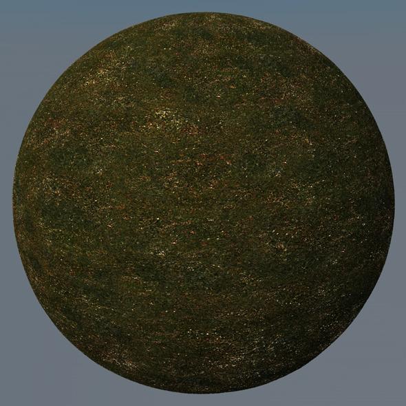 3DOcean Grass Landscape Shader 044 8793081