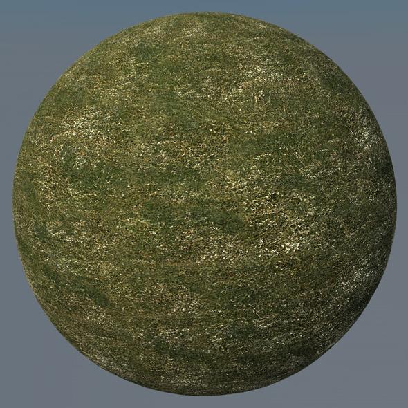3DOcean Grass Landscape Shader 047 8793322