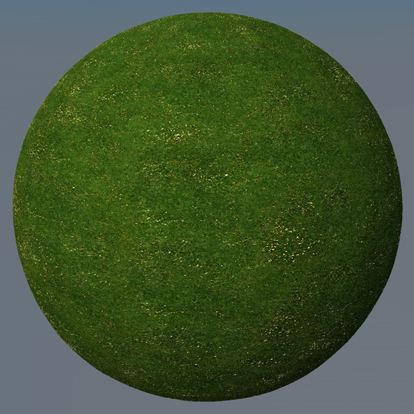 3DOcean Grass Landscape Shader 048 8793405