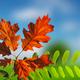 Colorful autumn - PhotoDune Item for Sale