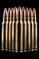 Bullets on Black - PhotoDune Item for Sale