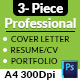 3- Piece Professional Resume/CV - GraphicRiver Item for Sale