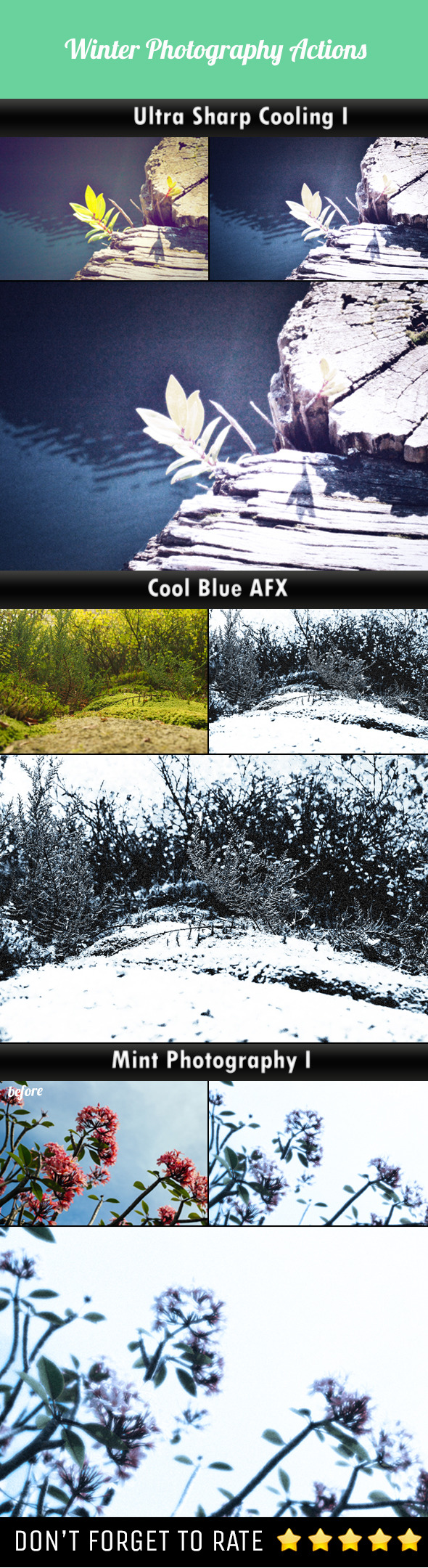 Winter Photography Photoshop Actions