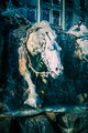 Horses of Bartholdi Fountain in Lyon - PhotoDune Item for Sale