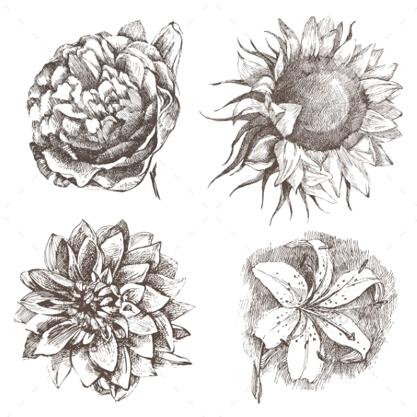 GraphicRiver Hand Drawn Flowers 8802211