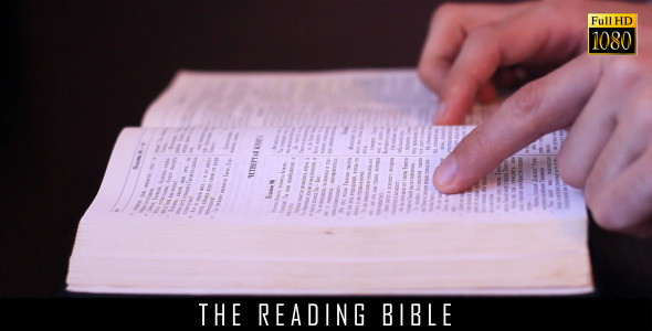 The Reading Bible 3