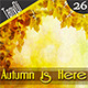 Autumn is Here Backgrounds - GraphicRiver Item for Sale