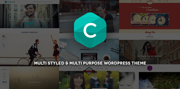 Consilium - Multi Styled & Multi Purpose Theme