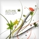 Autumn Floral Wave on White Background - GraphicRiver Item for Sale