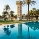 swimming pool with palm trees - PhotoDune Item for Sale
