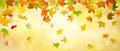 Panoramic autumn background - PhotoDune Item for Sale