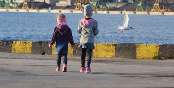 Kids and Seagulls