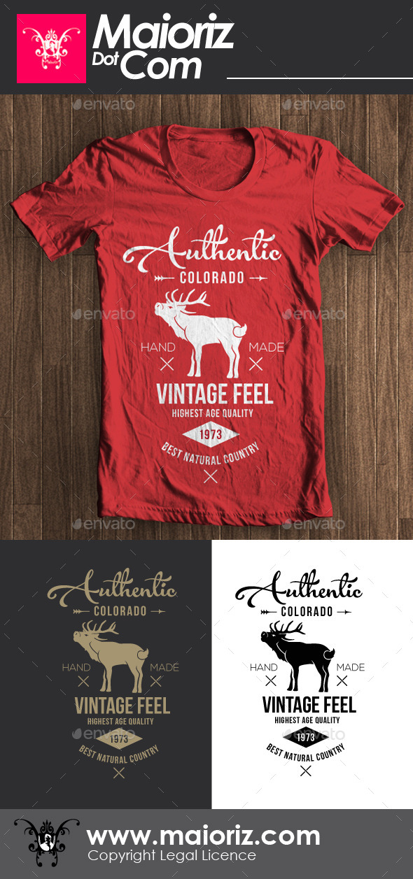 GraphicRiver Authentic Vintage Tshirt 8829784