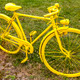 Old Yellow Bicycle in a Field - PhotoDune Item for Sale