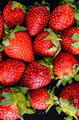Fresh Ripe Strawberry - PhotoDune Item for Sale