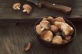 Shitake mushrooms - PhotoDune Item for Sale