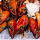 Fresh Crab Claws on Ice - PhotoDune Item for Sale