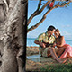 Slide Show - The Tree Of Memories - VideoHive Item for Sale