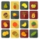 Fruit Flat Icons - GraphicRiver Item for Sale