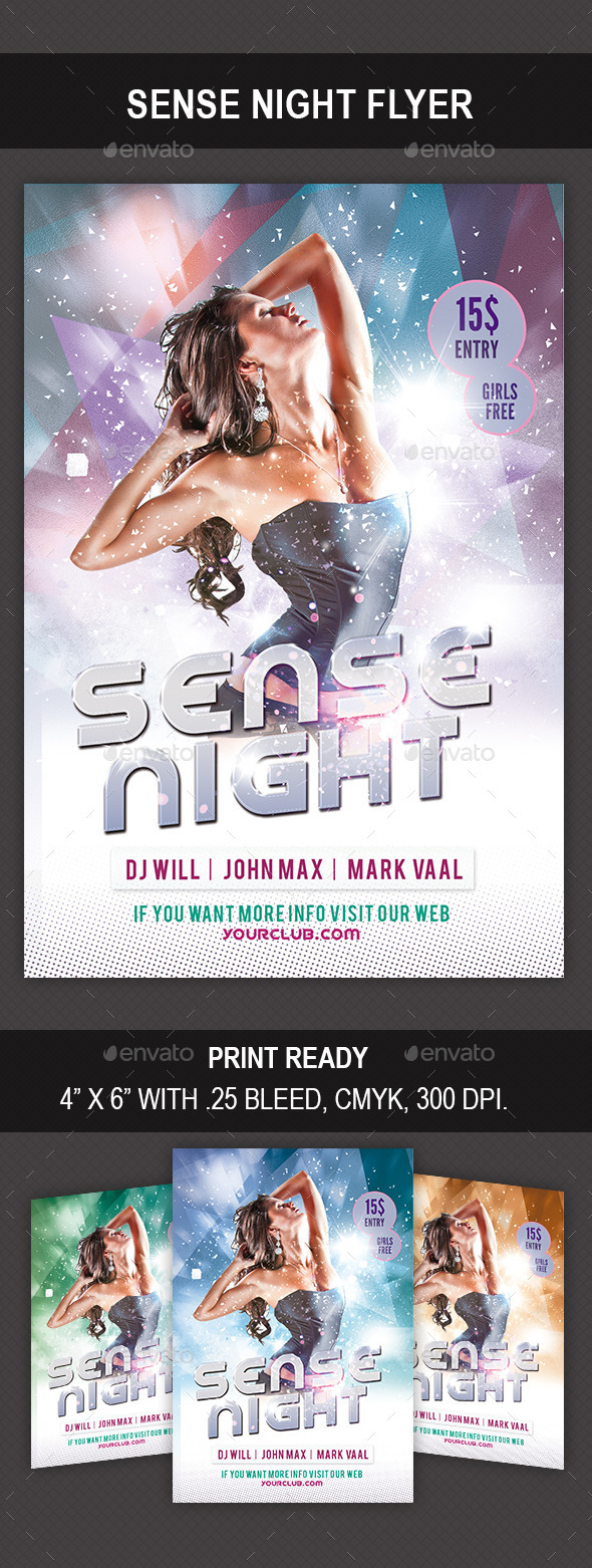 GraphicRiver Sense Night Flyer 8840277