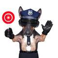 police dog motorbike - PhotoDune Item for Sale