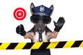 police dog - PhotoDune Item for Sale